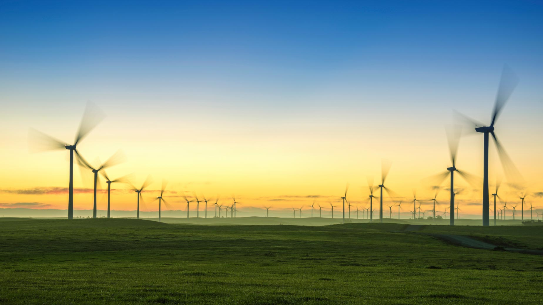 The-Climate-Impact-Of-Wind-Farms