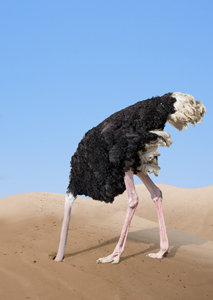 Bump when these numbers move - Page 27 Ostrich-Head-in-Sand-Oct-18