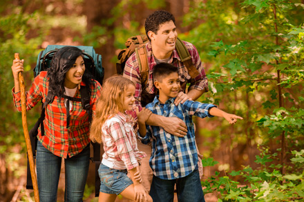 There are many ways to make nature walks educational