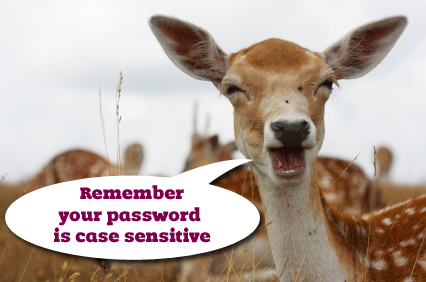 Speaking Deer - 'Case sensitive password'
