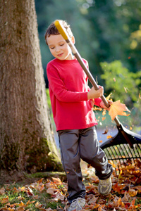 Young boy doing gardening to earn pocket money