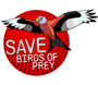 RSPB Wildlife Explorers Save birds of prey appeal