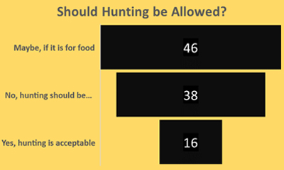 Should hunting be allowed - Schoolchild Survey - Graph from Education Quizzes