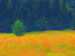 Impressionist painting of tree in field